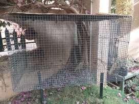Birds cage . Big size