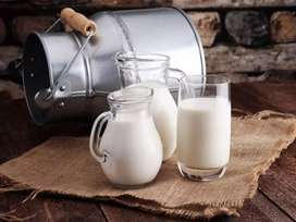 100% pure and fresh milk just in 110rs pr kg