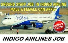 Airport Job salary 16 to 45k, 8 hour Shift Airline Industry Ground sta