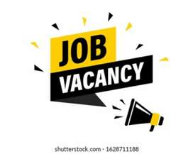 We need Freshers and Experience candidates