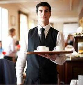 required chinese cook / Chaat Cook / Tandoor Cook / South Indian Cook