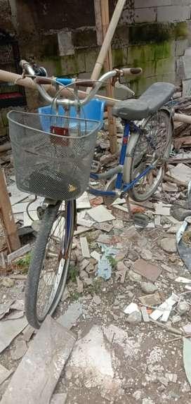 Sepeda mini jual apa adanya