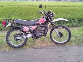 Suzuki TS Th 1999