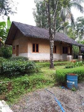 Jual Murah Tanah Kebun 2ha Di Subang Jawa Barat