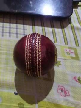 Kookaburra Pace ball
