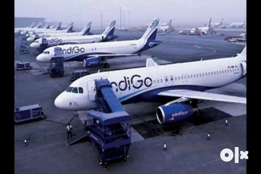 Airlines job Hiring- Airport Job- Male / Female Fresher to Experience 0