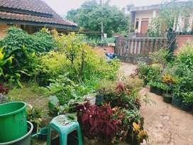 Rmh siap huni halaman luas murah plus 2  toko di tanjungsari Sumedang
