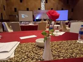 Sewa Proyektor dan Rental Giant Screen Area Kota Medan Bisa Delivery