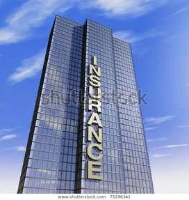 Insurance company job
