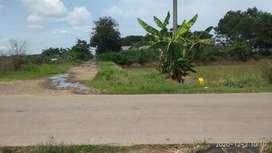 Dijual Murah Tanah 500ha Dekat Pelabuhan Patimban & Bandara Kertajati