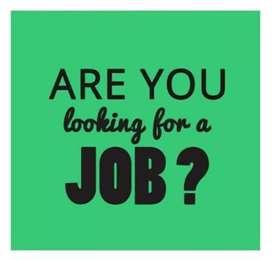 Need home jobs