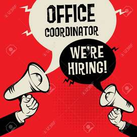 Urgent Hiring For Telesales Executive/ Office Coordinator