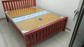 NEW Family or Queen  set home delivery details.8O784(call)565O4