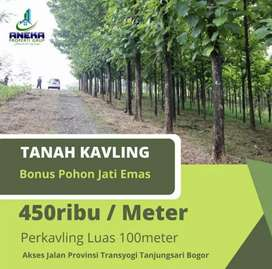 Dijual Cepat Tanah Kavling Murah dan Paling Laris Di Bogor timur