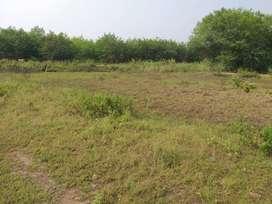 Wealthy plots at kanchikacherla plots