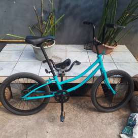 Sepeda Minion 20