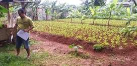 Dijual tanah 638 meter bersampingan dgn cluster serpong garden