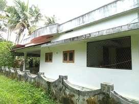 Muvattupuzha 15 cent വീട് കോലഞ്ചെരിറൂട്ട്