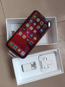 Iphone XR  (Holi special Limited Stock  Sale Up To 45% Off )