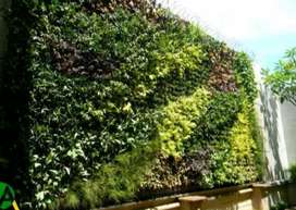 Taman vertikal/taman rumahan