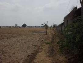 Tanah Strategis Bangun Ruang Gudang Pinggir Jalan Raya Pagaden