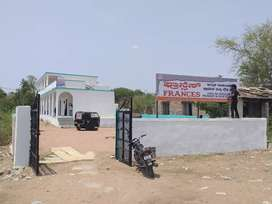 Frances english medium school chittapur