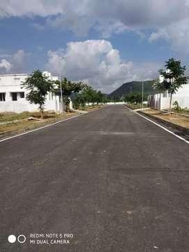 Sontyam village Hway bisaid