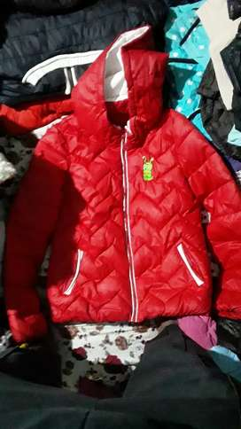 Jacket 800rs