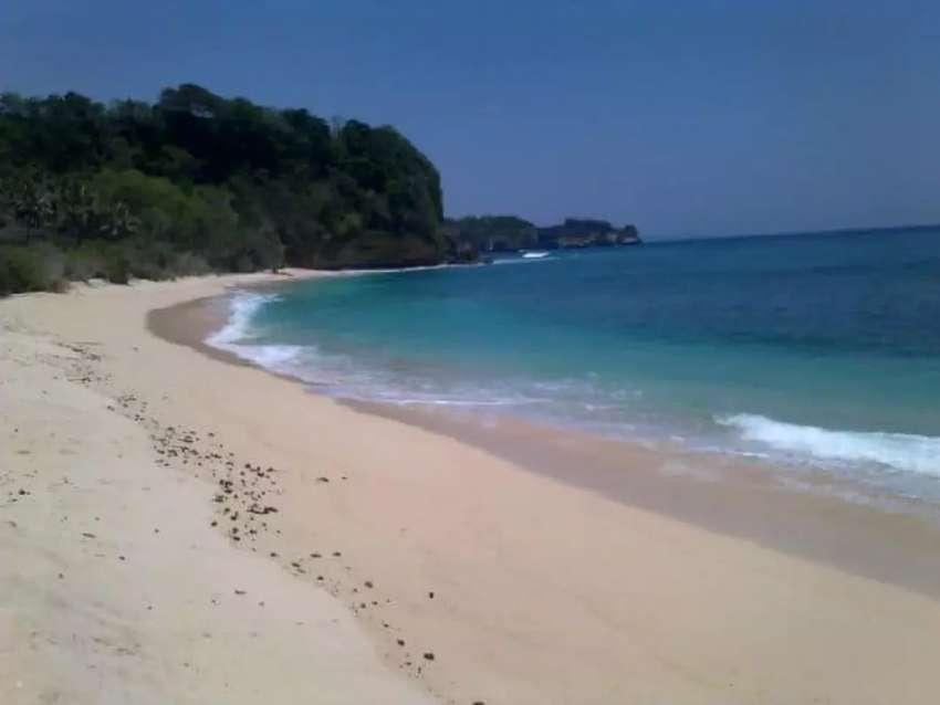 Dijual sangat murah Tanah Loss Pantai Konda Maloba Sumba Tengah NTT 0