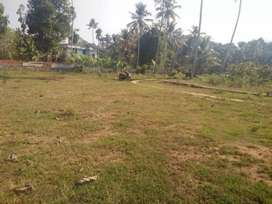 Plot for Sale at Saligao 4900 sqmtrs with Rate - 16000 per sqmtr