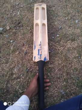best cricket tennis bat