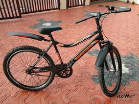 Brand New JATSON ROOTER bicycle for sale