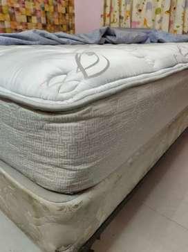 12 inch Queen size bed