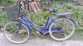 Sepeda jembolly dewasa