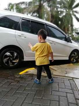Sewa mobil / supir pribadi