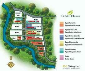 Selama iklan tayang unit tersedia golden flower
