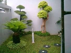 Tukang taman hijau minimalis/Tanggeung