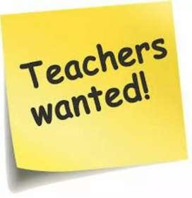 Teachers required