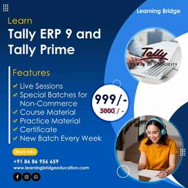 Tally coaching online