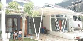 Canopy minimalist Ms.382