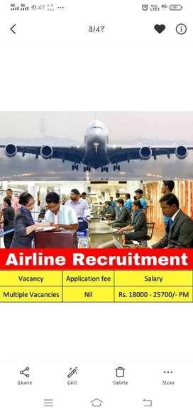 Indigo airlines job