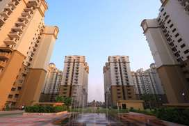 Three  Bedroom Builder Floor  for sale in Noida Extension