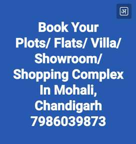 Flats and Plots in Mohali near Chandigarh