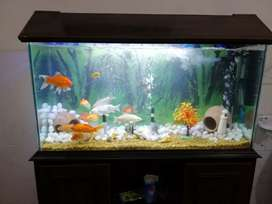 4 ft Aquarium Brand new for Sale without fishes and accessories