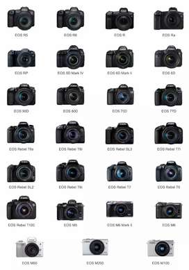 RENT FOR CAMERA'S