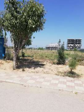 A block 5 kanal farm house for sale in gulberg Islamabad
