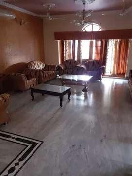 266 gaz old house available mohit nagar 40/60 poss location