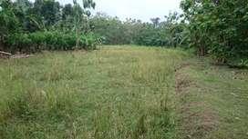 Tanah Lokasi Perumahan Daerah Kebon Pelok Kota Cirebon