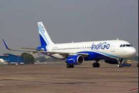 vGolden Chance to JOB in Indigo Airline Opening for Airport Job Urgent