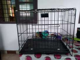 Cage for cats or puppy